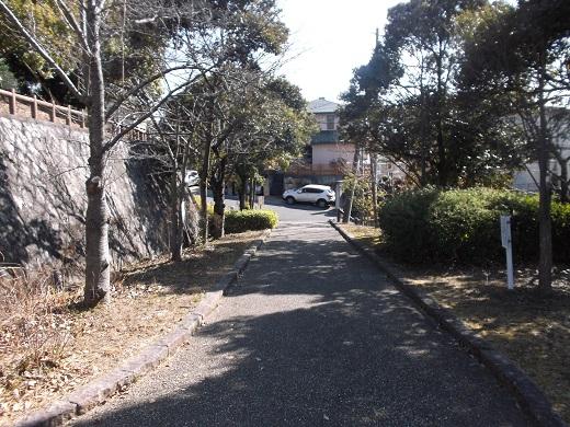 004-520.jpg