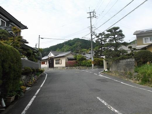 001-520.jpg