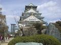 160324 大阪城-30.jpg